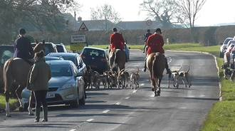 Force the English police to uphold the law on foxhunting