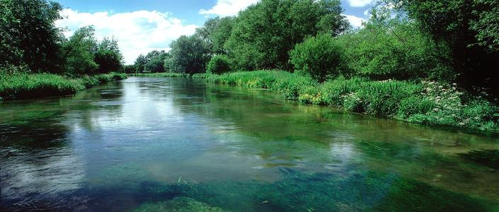 RIVER ITCHEN - URGENT POLLUTION APPEAL
