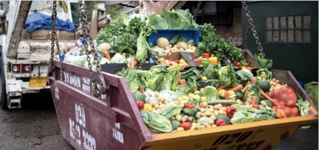 Reduce food waste in the UK