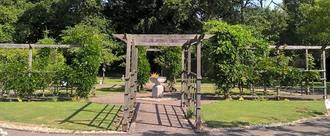 Do not remove items from the baby and childrens memorial garden or graves