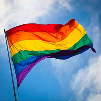 To fly the  rainbow flag over County Council Building in LGBTQ history month