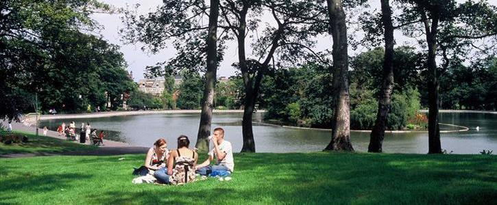 Save Newcastle's Parks