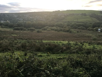 Executive houses to be built on beautiful green field land