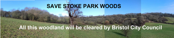 Save Stoke Park Woods