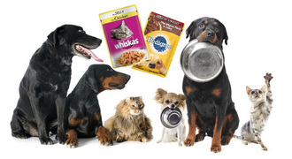 Stop using plastic pet food pouches