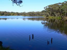 Addressing Safety and Accessibility Concerns at Wentworth Falls Lake
