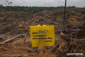 Remove palm oil from food