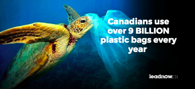 Ban plastic bags in British Columbia