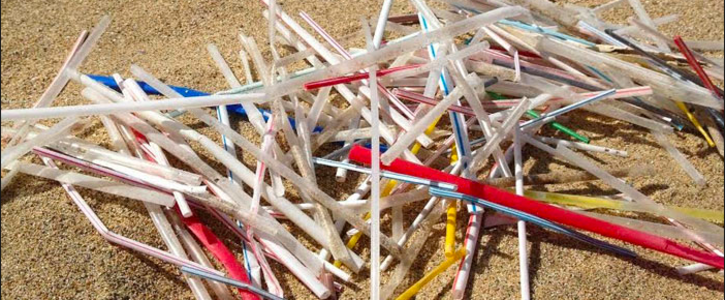 Replace plastic straws with paper straws at Tank NZ