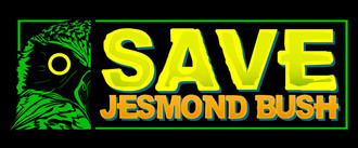 Savejesmondpetitionformat