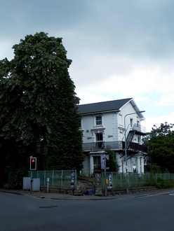 Save Suffolk House Trees!