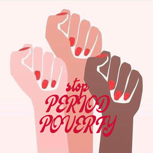 Help end period poverty - subsidise menstrual cups