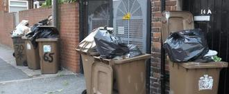 No to '3 Weekly Bin Collection'