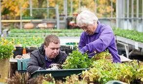 REINSTATE THE GARDEN NURSERY LOCATED ON MARSTON TRADING ESTATE FROME FOR PEOPLE WITH DISABILITIES