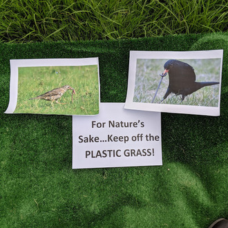 For Nature's Sake...Keep off the PLASTIC GRASS!