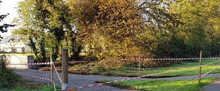 Preservation of 18th Century Carton Avenue in Maynooth