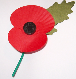 Buy Long Lasting Poppies And Make A Donation Each Year Instead!