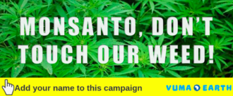 MONSANTO, DON'T TOUCH OUR WEED