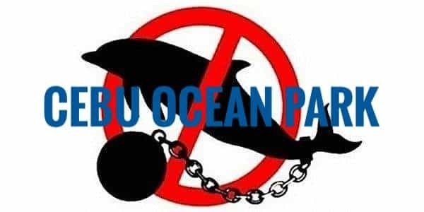 Stop Dolphin and Sea Lion shows in Cebu Ocean Park