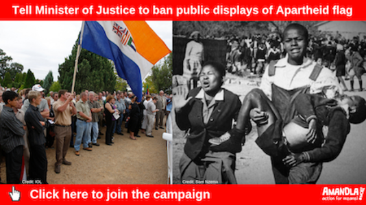 Tell Minister of Justice to ban public displays of the Apartheid flag