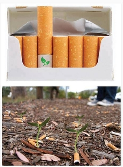 1526393267 archive cigarrillos biodegradables