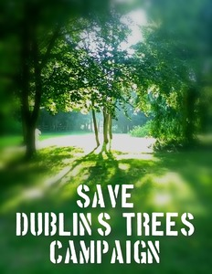 SAVE DUBLIN'S TREES