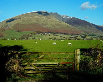 Help Friends of Blencathra buy the mountain, not a wealthy tycoon