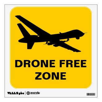 Sample Petition for a Local Resolution on Drones