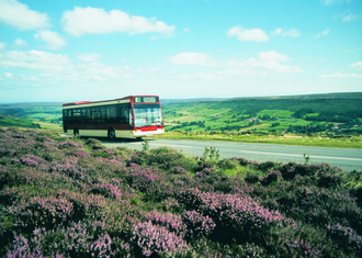 Bus in the moors