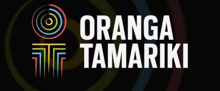 Urgent Royal Commission of Inquiry into Oranga Tamariki - Ministry for Children - formerly CYFS