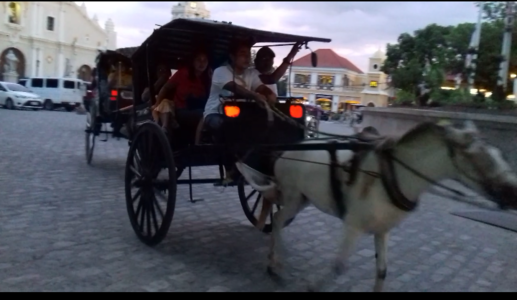 DEMAND A BAN ON HORSE CARRIAGE IN VIGAN