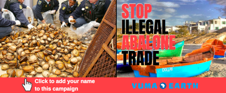 Stop Illegal Abalone Trade
