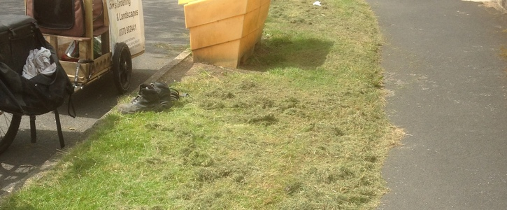 Stop Sheffield City Council mowing grass verges