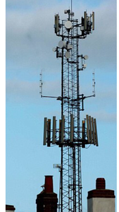Stop The Proposed 30 Metre High Telecommunication Mast at Braintree College