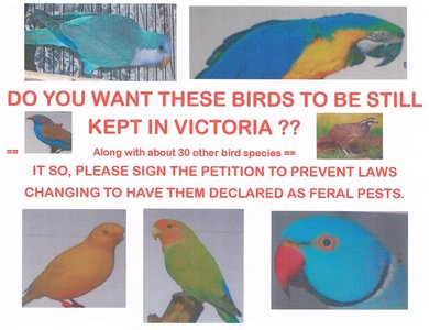 stop DEPI  from reclassifying pet bird species