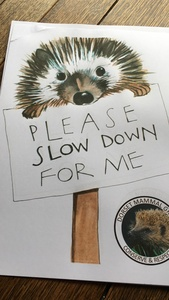 Hedgehog Signs To Alert Drivers to Slow Down.