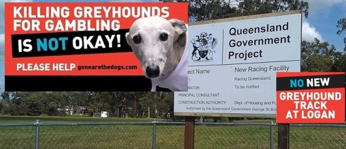 Don't Build a Greyhound Racing Facilty in Logan, Queensland