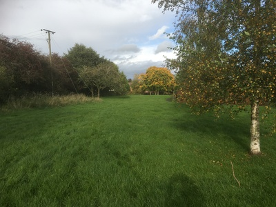 Save Dorset Dorset Drive (East and West) Local Green Space Designation