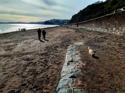 Save Teignmouth Beach