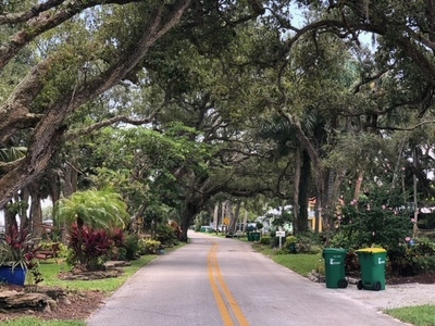 Please help us save the oak trees on Rockledge Dr. Rockledge FL