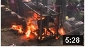 Leopard burned alive in Uttarkhand, India, take action!