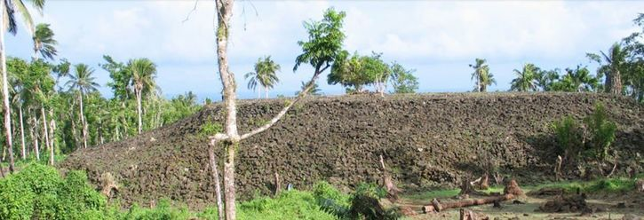 Stop the sale of Vailoa, Palauli lands and return to Vailoa