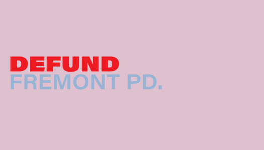 Defund FPD and reinvest in Black communities