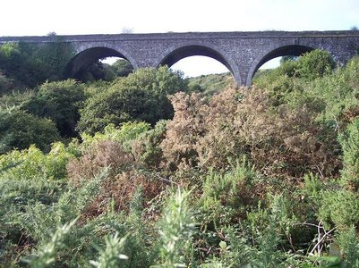 Restore the Cork, Bandon and South Coast Railway as a greenway