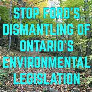 Stop Ford's Government Dismantling of Environmental Protection