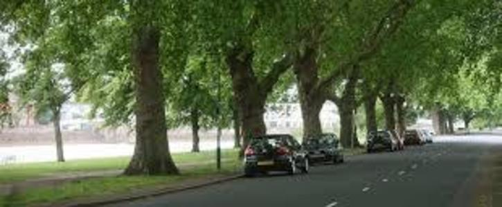Keep the embankment open to cars