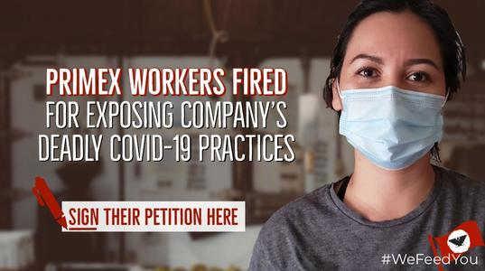 Primex workers fired for exposing company's deadly COVID-19 practices