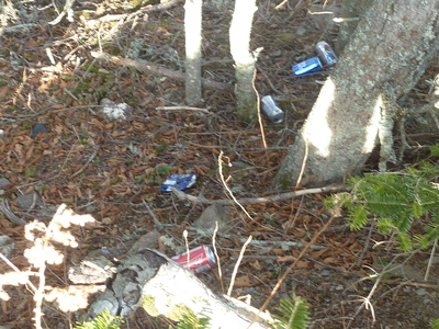 How can we all pull together to stop littering and the destruction it causes.