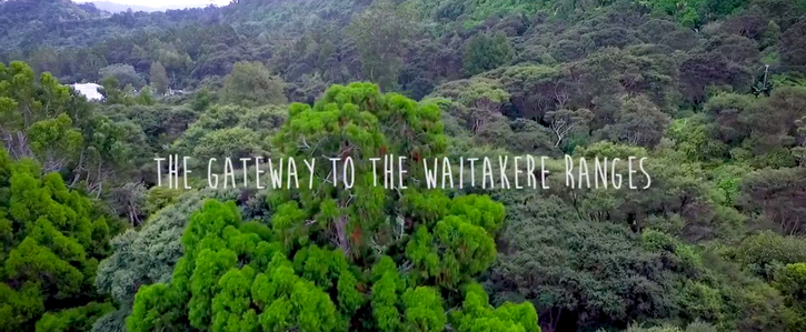 Stop Watercare! Say NO to the destruction of native bush in Titirangi for a water treatment plant