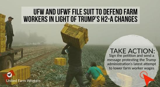 "Sign petition telling Trump's USDA ""NO"" to new farm worker wage cuts"